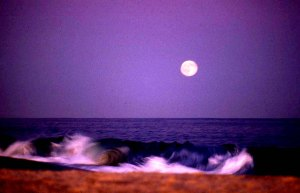 1828 24 Moonrise beach copy
