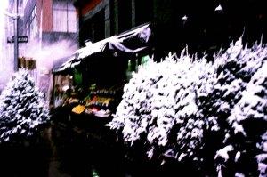 1921 06 Xmas trees snow copy