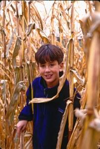 2386 17 David corn field