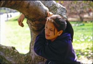 2587 24 Julia tree