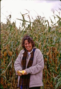 2664 29 Lisa corn