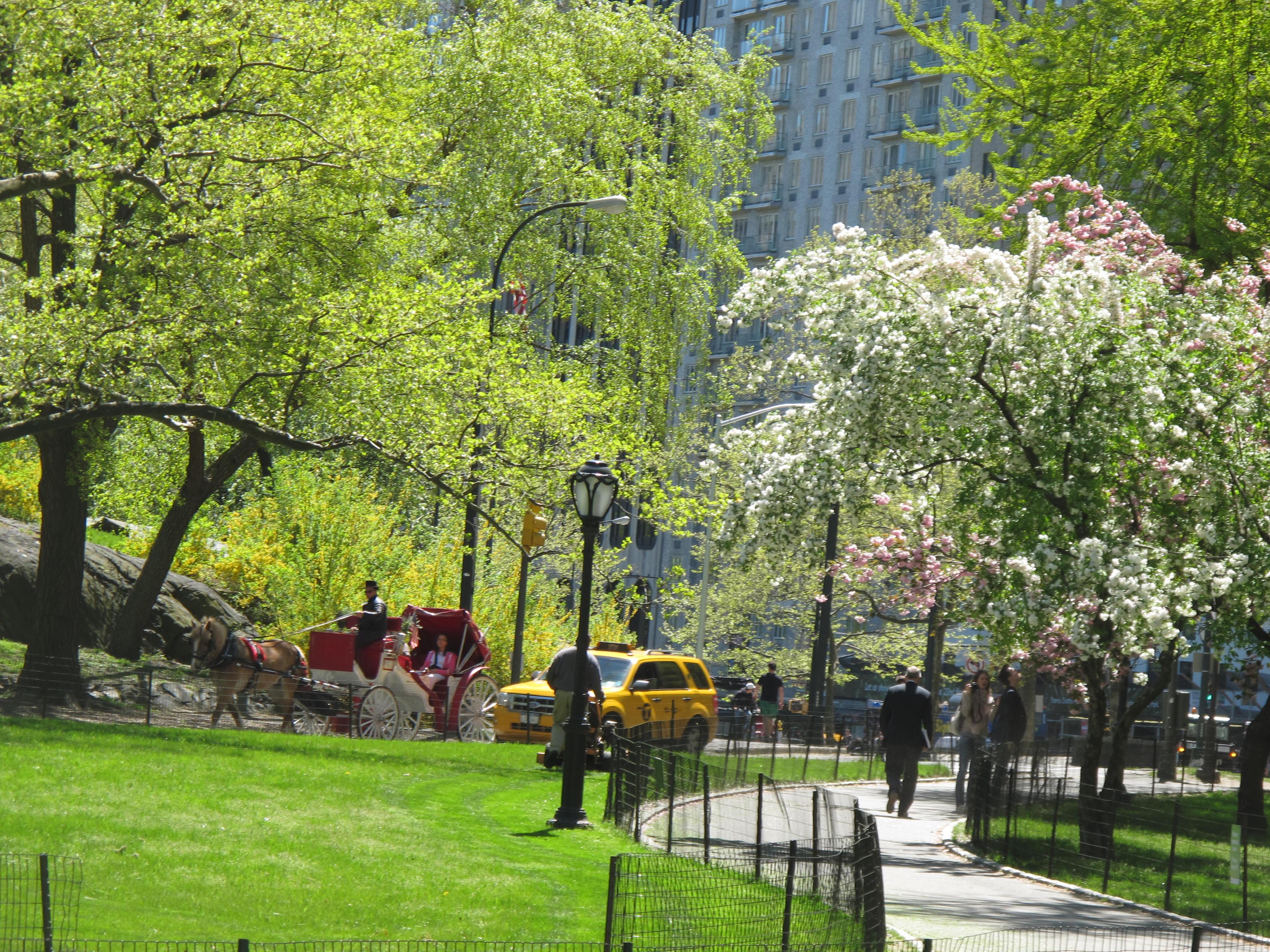 Spring | photobackstory
