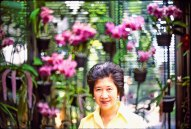 0057 20 Deanna orchids