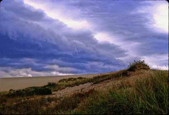 0650 10 Cape cod dune a copy