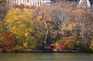 2546 16 Central park