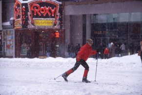 2976 16 Snow NYC