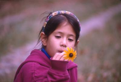 1718 32 Julia flower