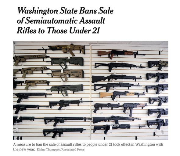 gun sale copy